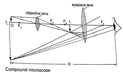 Compound microscope-phy Form Four